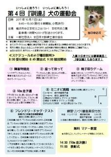 10.7運動会案内.jpg